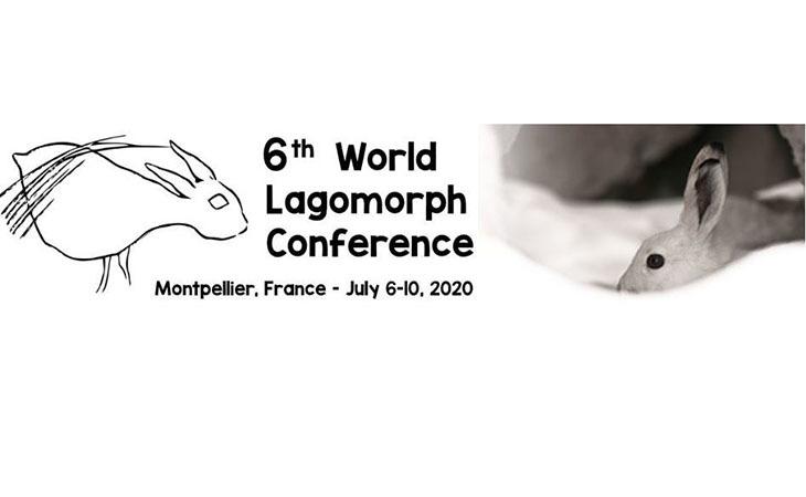 6-я Всемирная Конференция по Зайцеобразным перенесена на год